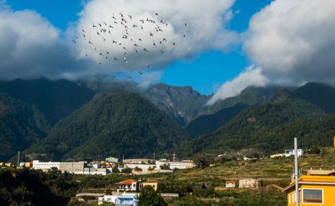 Santa Cruz de La Palma, Montaña La Breña, Canarias, Spain