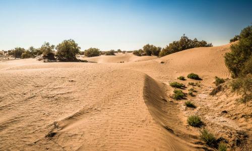 TâlhâSouss-Massa-Draa, Morocco