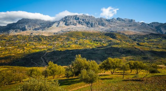 IbokoureneTangier-Tetouan, Morocco