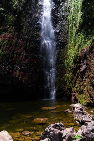 La Plaine-des-Palmistes, La Plaine-des-Palmistes, Réunion, Réunion