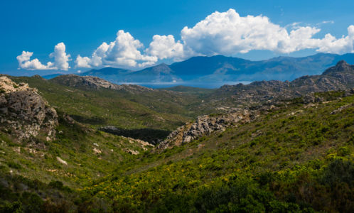 D 81, Urtaca, Haute-Corse, France