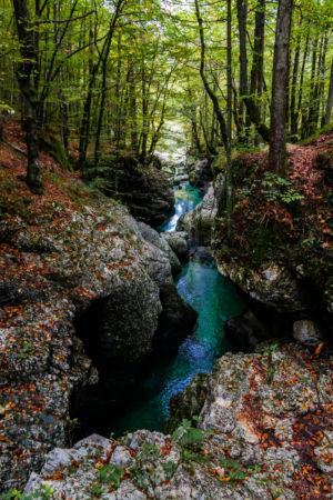 Hebat, Srednja vas v Bohinju, , Slowenien