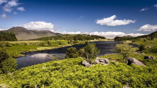 Ireland, County Kerry, Derrylea