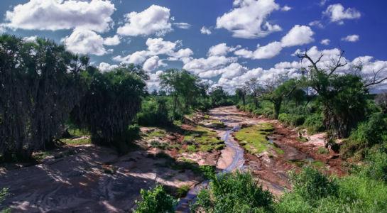 Maasai Mara, Keekorok, Rift Valley, Kenia