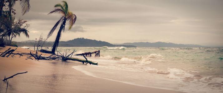 Punta Uva, Manzanillo, Costa Rica, GPS (9,643705; -82,686227)