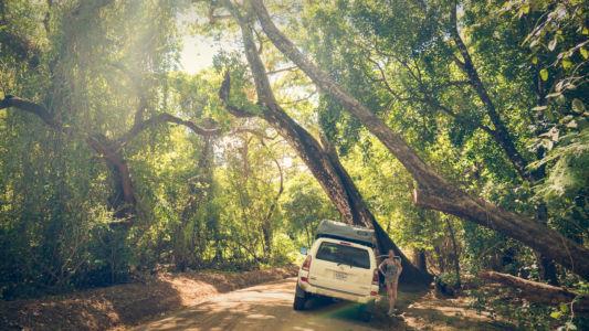 Santa Elena, Hacienda Murcielago, Costa Rica, GPS (10,918002; -85,716833)