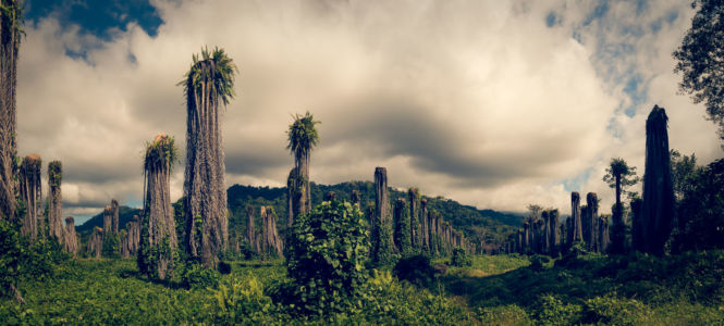 Savegre, Portalon, Costa Rica, GPS (9,353055; -83,992222)