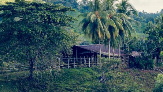Sierpe, Potrero, Costa Rica, GPS (8,771018; -83,506727)