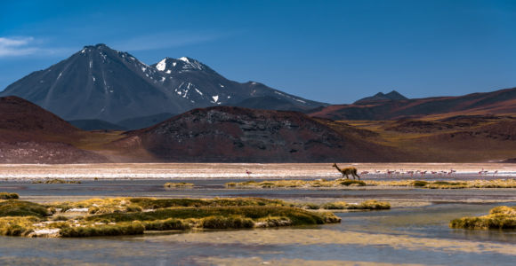 Chile - San Pedro De Atacama - GPS (-23,954785; -67,580303)