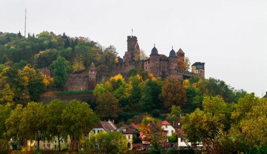 Eichel, Kreuzwertheim, Bayern, Deutschland