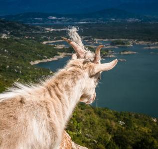 Oračine, , , Montenegro