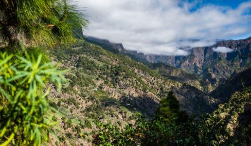 El Gánigo, Llanos De Aridane, Canarias, Spain