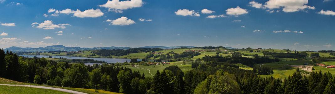 Krotemoossiedlung, Vils, Tirol, Österreich