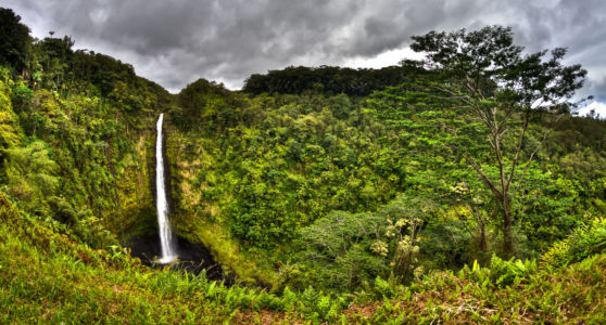 State Hwy 22, Hilo, Hawaii, United States