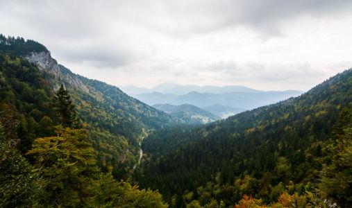 Zgornja Sorica, Sorica, , Slowenien
