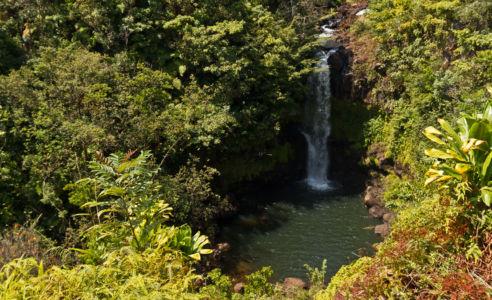 Hakalau, Hakalau, Hawaii, United States