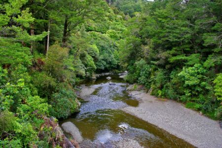 Kaitoke, Kaitoke, , Neuseeland