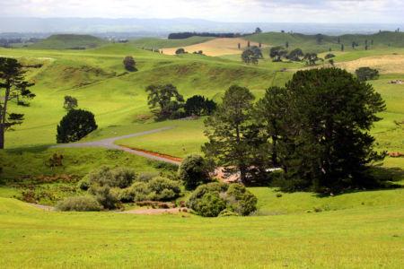 New Zealand, Hinuera, , Neuseeland