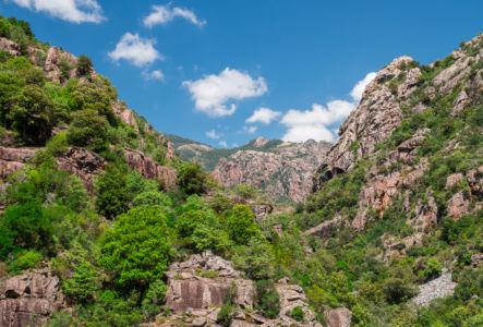 Tra Mare e Monti, Evisa, Corse-du-Sud, France