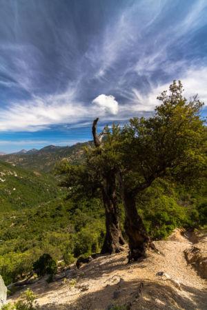Urzulei, Urzulei, Sardegna, Italien