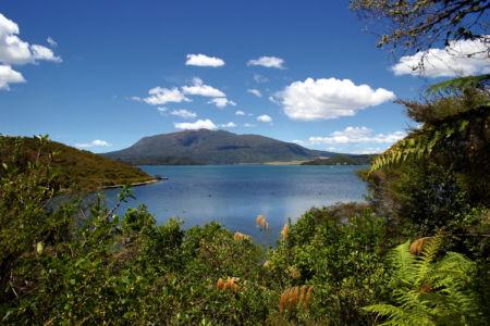 Kaharoa, Ngongotaha, , Neuseeland