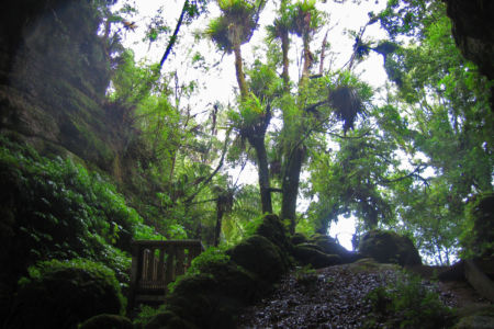 Te Anga, Owhiro, , Neuseeland