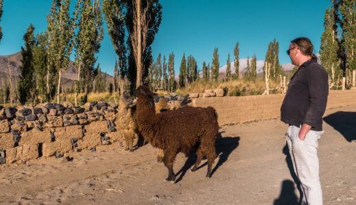 Bolsa Del Tigre, Argentina, GPS (-26,475368; -67,265083)