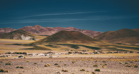 Cara Cienaga, Catamarca, Argentina, GPS (-25,792923; -67,283902)