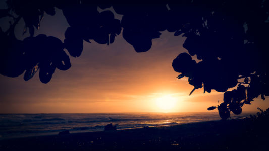 Limon, Bananito Sur, Costa Rica, GPS (9,903142; -82,979683)