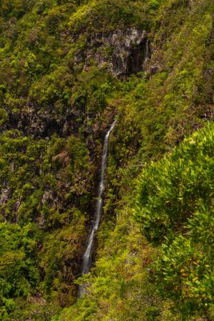 Valruche, , Savanne, Mauritius