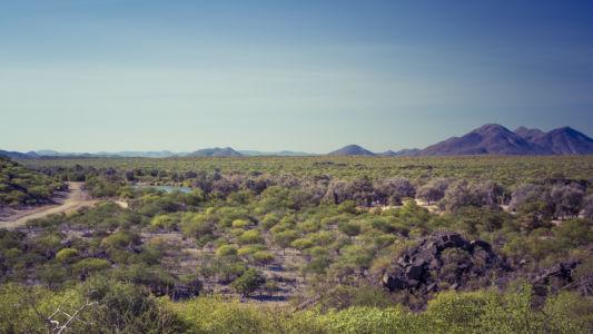 Muande, Namibia, GPS (-17,174210; 13,578638)