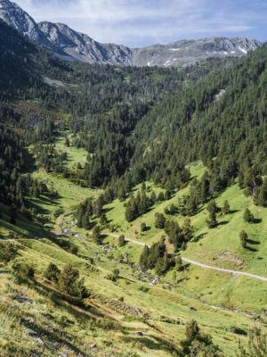 Noris, Pyrenees, GPS (42,556893; 1,409113)