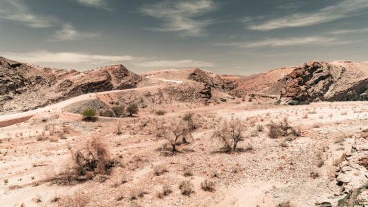 Oase, Namibia, GPS (-23,482830; 15,762715)