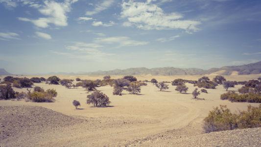 Omanye, Namibia, GPS (-18,786585; 12,965819)