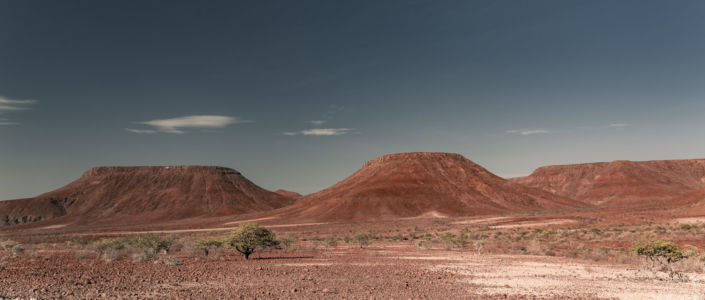 Palm, Namibia, GPS (-20,165706; 14,059016)