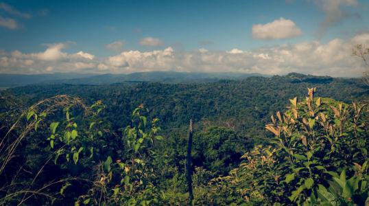 Piedras Blancas, Mogos, Costa Rica, GPS (8,752898; -83,348448)