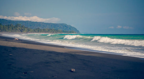 Puerto Jimenez, Carate, Costa Rica, GPS (8,439242; -83,450605)