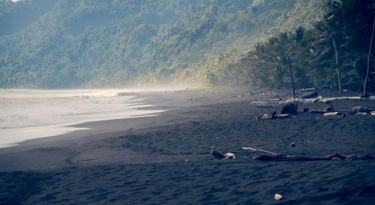 Puerto Jimenez, Carate, Costa Rica, GPS (8,439327; -83,450337)