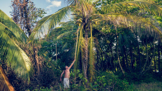 Punta Uva, Manzanillo, Costa Rica, GPS (9,643765; -82,686225)