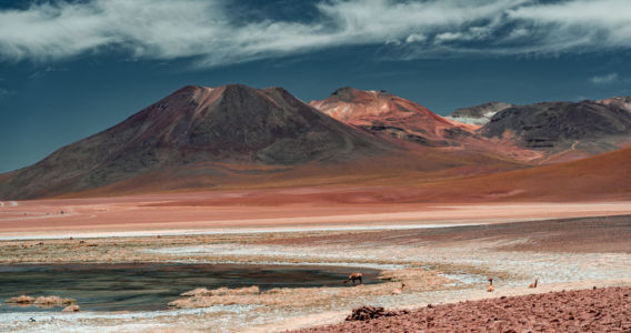 San Pedro De Atacama - Chile - GPS (-22,537637; -68,035898)