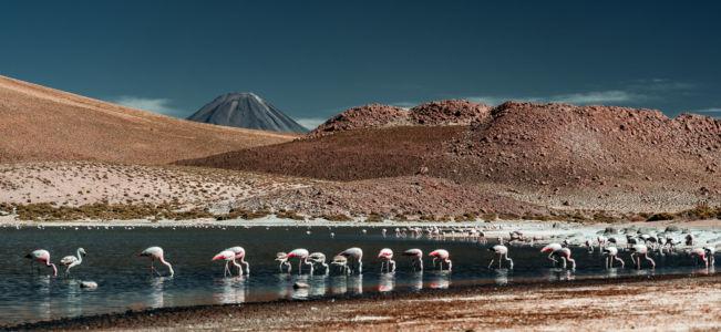 San Pedro De Atacama - Chile - GPS (-22,609363; -68,060763)