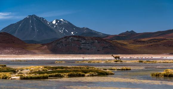 San Pedro De Atacama - Chile - GPS (-23,954785; -67,580303)