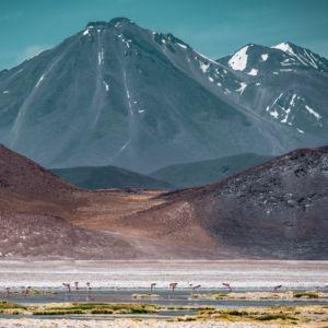 San Pedro De Atacama - Chile - GPS (-23,954802; -67,580272)