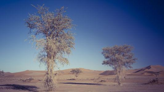 Sesriem, Namibia, GPS (-24,742303; 15,303766)