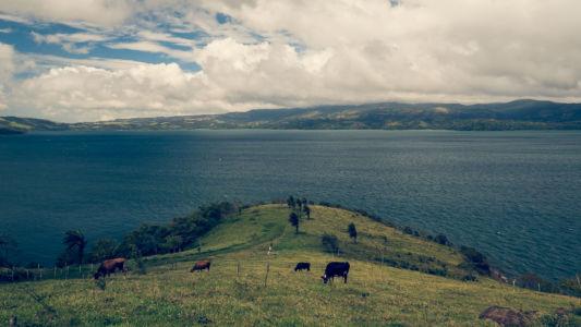 Tilaran, San Luis, Costa Rica, GPS (10,514827; -84,933293)