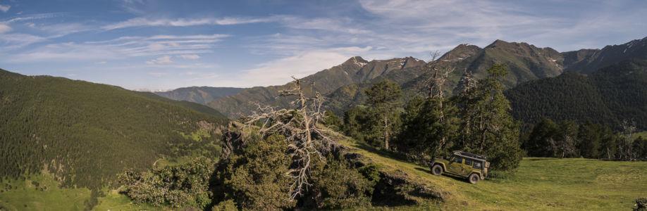 Tor, Pyrenees, GPS (42,561112; 1,407778)