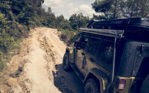 Troncedo, Pyrenees, GPS (42,318100; 0,324493)