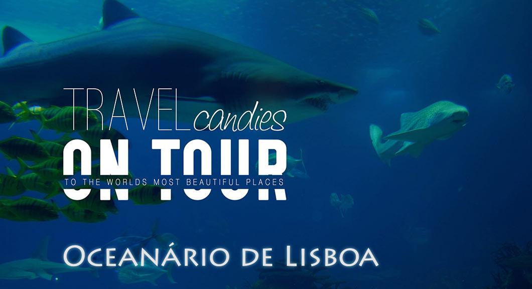 Ozeaneum-Lissabon, Feature Image