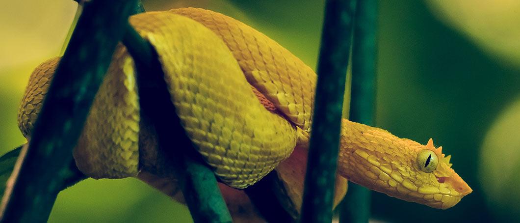 Costa Rica Blog 1